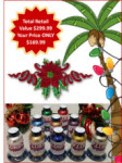 Floriani Holiday Glitz Collection with FREE Designs! - More Details